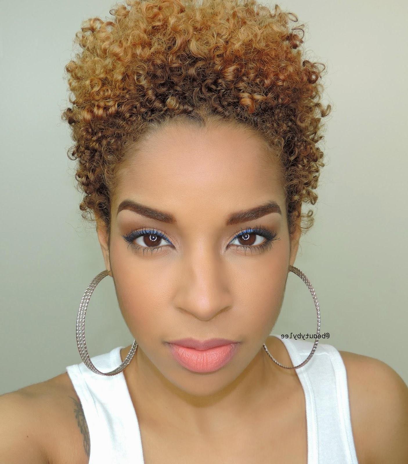 Top Ten Elegant Short Natural Haircuts For Black Females Inspiration For Short Hairstyles For Black Round Faces (View 19 of 25)