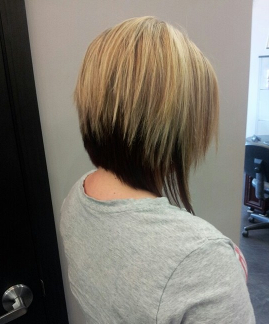 Featured Photo of Straight Cut Two Tone Bob Hairstyles