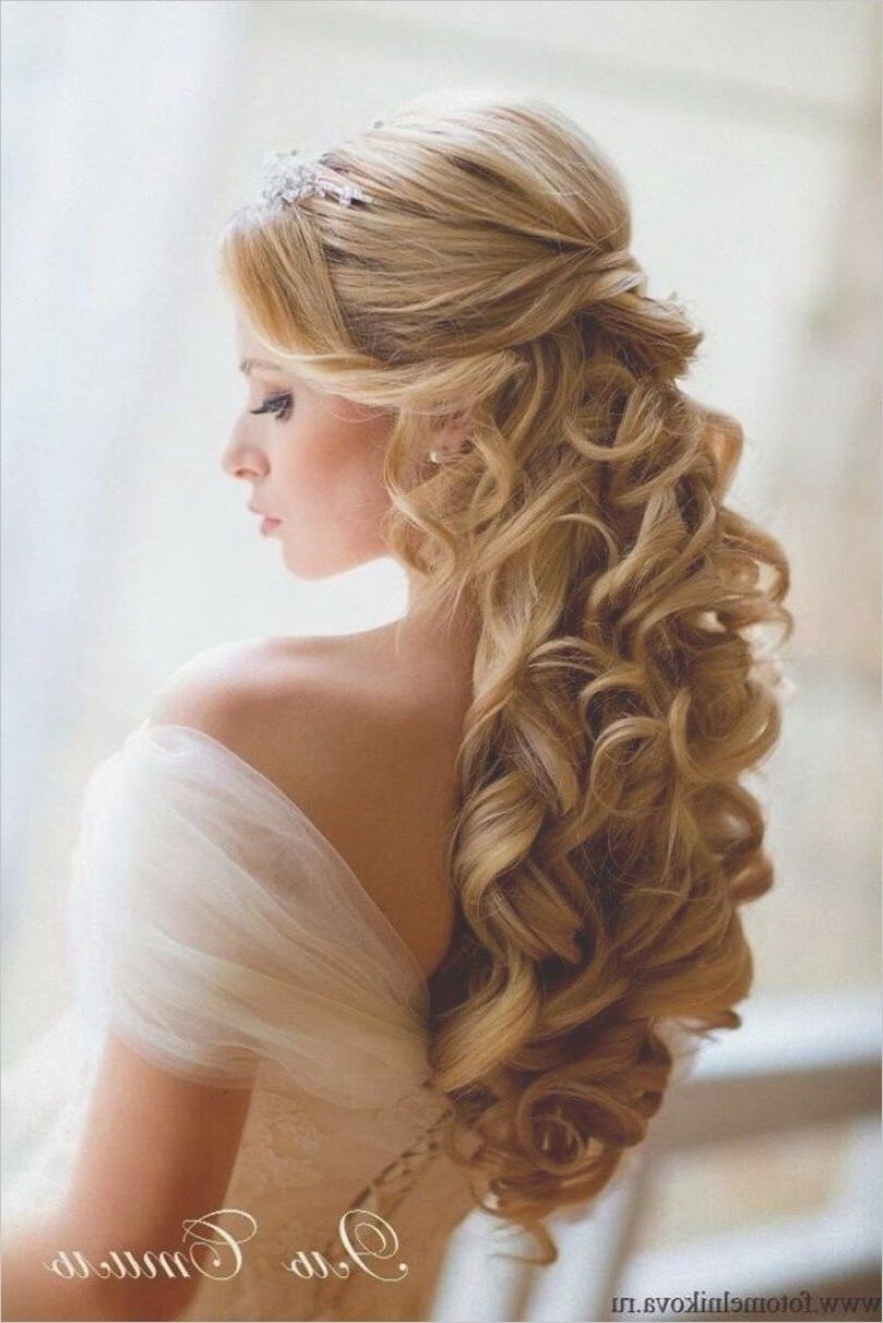 Wedding Hairstyles For Long Hair Half Up Long Short Hairstyles Regarding Half Long Half Short Hairstyles (View 25 of 25)