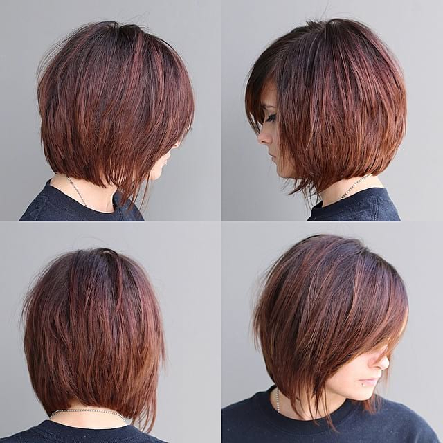 Women's Warm Brunette Shaggy Bob With Fringe And Side Swept Bangs Inside Short Stacked Bob Blowout Hairstyles (View 24 of 25)