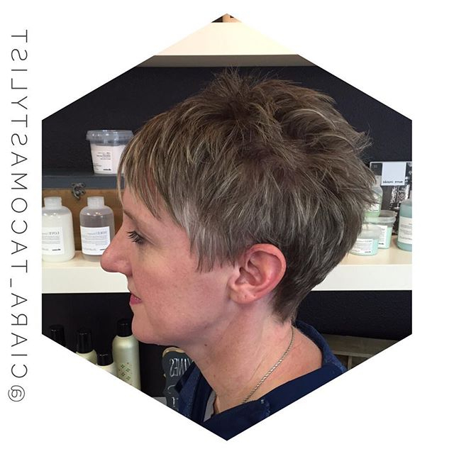 19 Incredibly Stylish Pixie Haircut Ideas – Short Hairstyles For Within Long Curly Salt And Pepper Pixie Hairstyles (View 11 of 25)