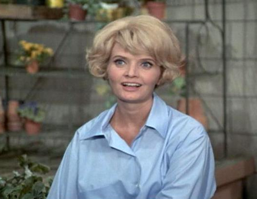 Barstool Entertainment For Carol Brady Inspired Hairstyles (View 10 of 25)
