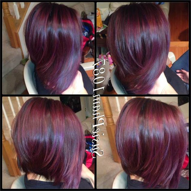 Purple Haze Color Meltsusie Pham – Hair Color – Modern Salon For Purple Haze Hairstyles (View 15 of 25)