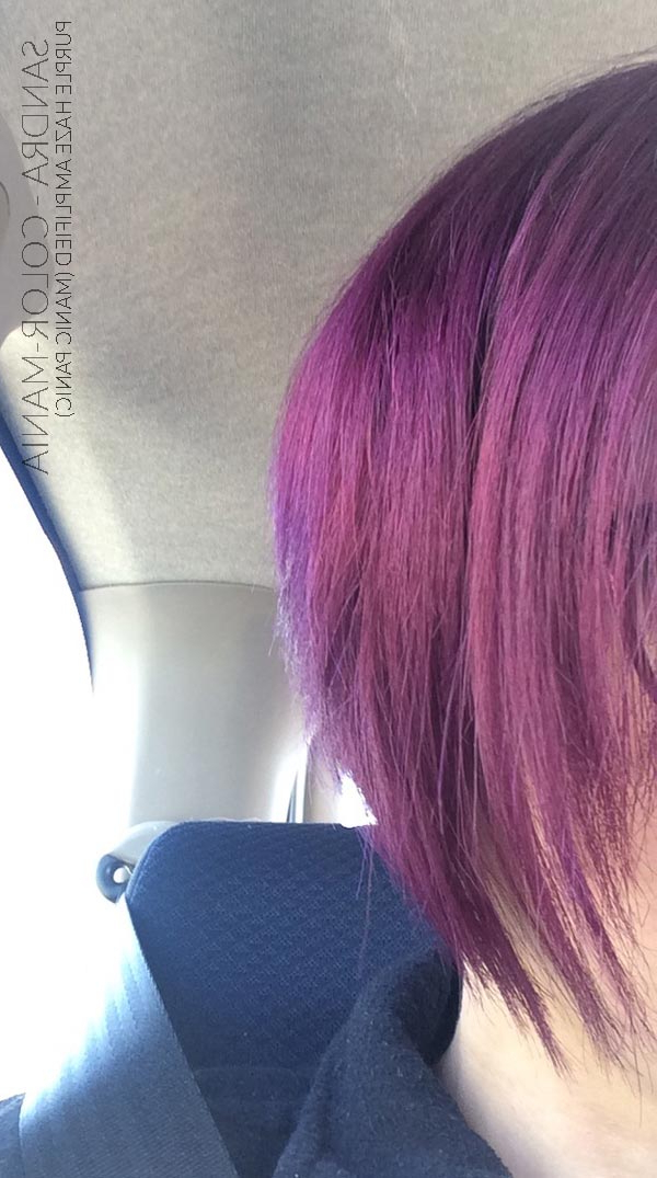 Violet Purple Haze Hair Coloring – Manic Panic | Color Mania Inside Purple Haze Hairstyles (View 11 of 25)
