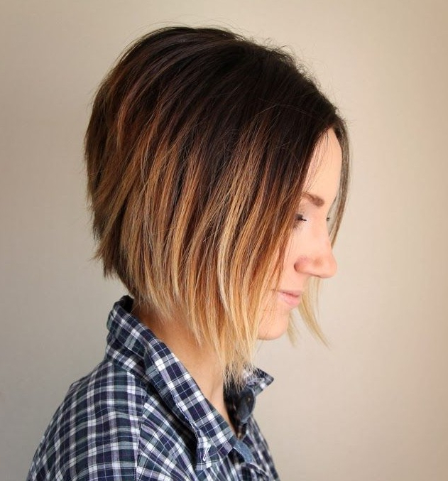 30 Most Hottest Straight Bob Haircuts For Women – Haircuts Inside Current Straight Layered Tresses In A Line Hairstyles (View 12 of 25)