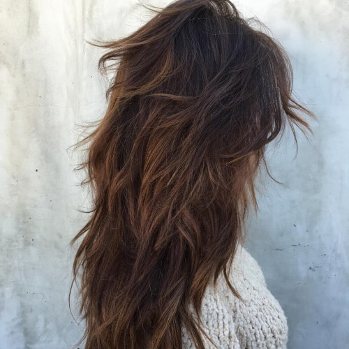 50 Funky Shag Haircuts | Hair Motive Hair Motive Throughout Current Brunette Messy Shag Hairstyles (View 11 of 25)