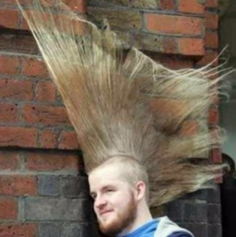 50 Ridiculous Haircuts – Hairstyles & Haircuts For Men & Women Within Ride The Wave Mohawk Hairstyles (View 15 of 25)