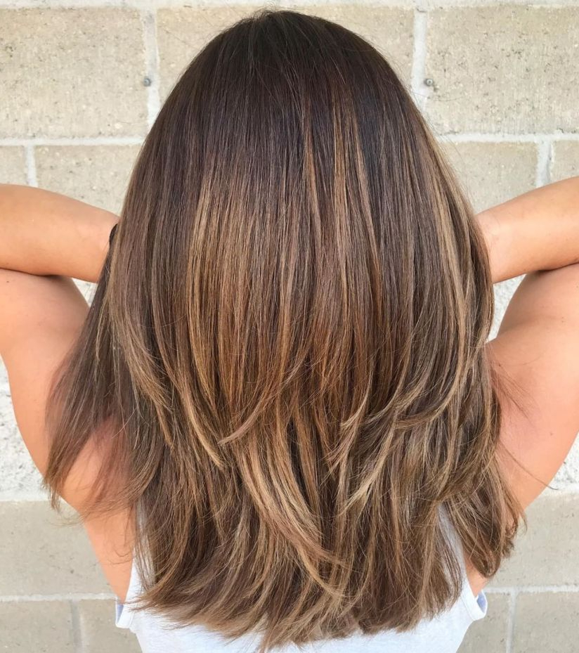 70 Brightest Medium Layered Haircuts To Light You Up In 2018 | Hair Intended For Current Mid Length Two Tier Haircuts For Thick Hair (Gallery 1 of 25)