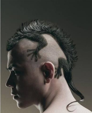 A Reptile Shaped Mohawk Haircut. | Art And Fashion | Hair Cuts, Hair In Work Of Art Mohawk Hairstyles (Gallery 11 of 25)