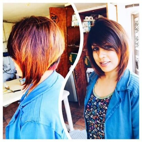 Collection Of Feather Cut Hair Styles For Short, Medium And Long Hair Inside 2018 Medium Feathered Haircuts For Thick Hair (View 20 of 25)
