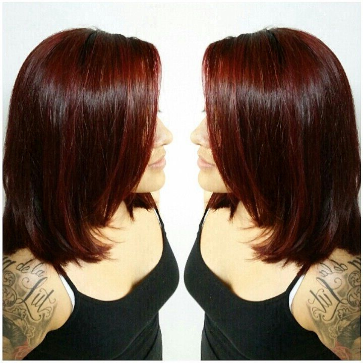 Deep Burgundy Red Hair Color On Shoulder Length Layered Haircut With Regard To Best And Newest Burgundy Bob Hairstyles With Long Layers (Gallery 13 of 25)