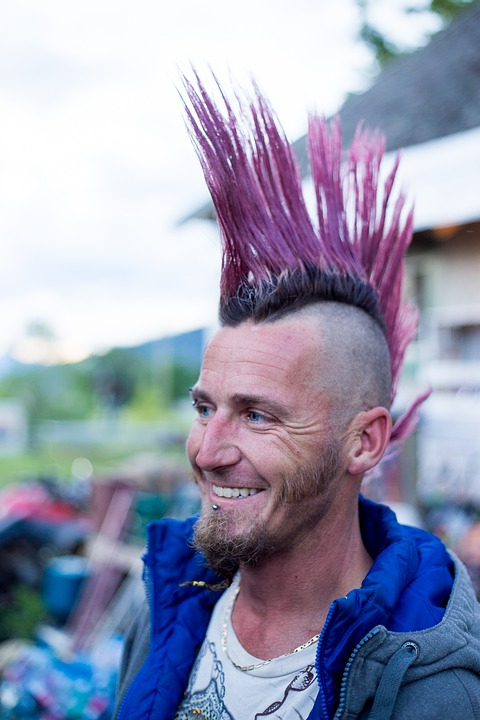 Iroquois Punk Mohawk · Free Photo On Pixabay Throughout Pink And Purple Mohawk Hairstyles (View 10 of 25)