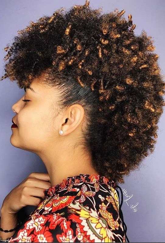 Mohawk Hairstyles For Natural Hair In 2018 | Hairstyles/hair Care In Cute And Curly Mohawk Hairstyles (View 3 of 25)