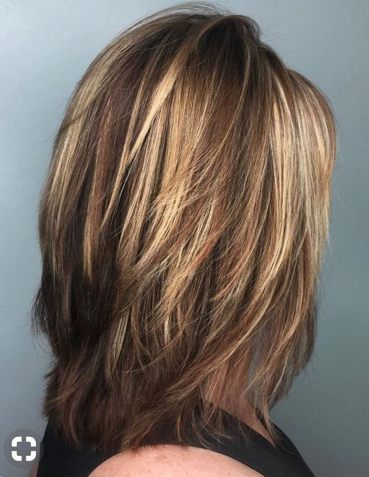 Pinsallie Davis Lovell On Hair | Hair Cuts, Hair Styles, Layered For Most Recently Mid Length Two Tier Haircuts For Thick Hair (View 6 of 25)