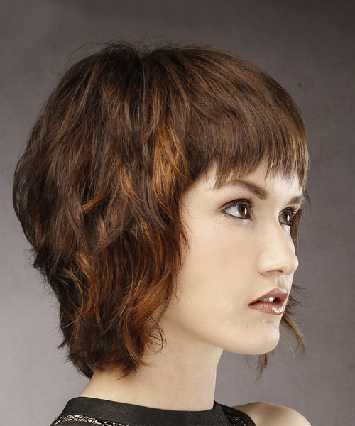 Short Straight Casual Shag Hairstyle With Layered Bangs – Brunette In Most Recently Brunette Messy Shag Hairstyles (View 5 of 25)