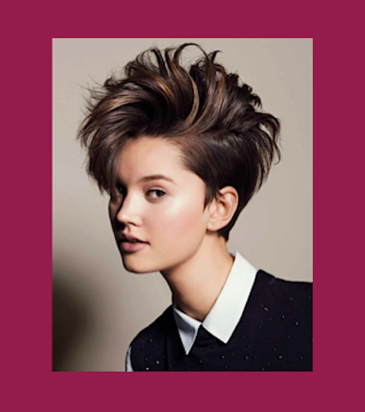 Sophisticate's Hairstyle Guide » Faux Hawk Throughout Asymmetrical Pixie Faux Hawk Hairstyles (View 24 of 25)