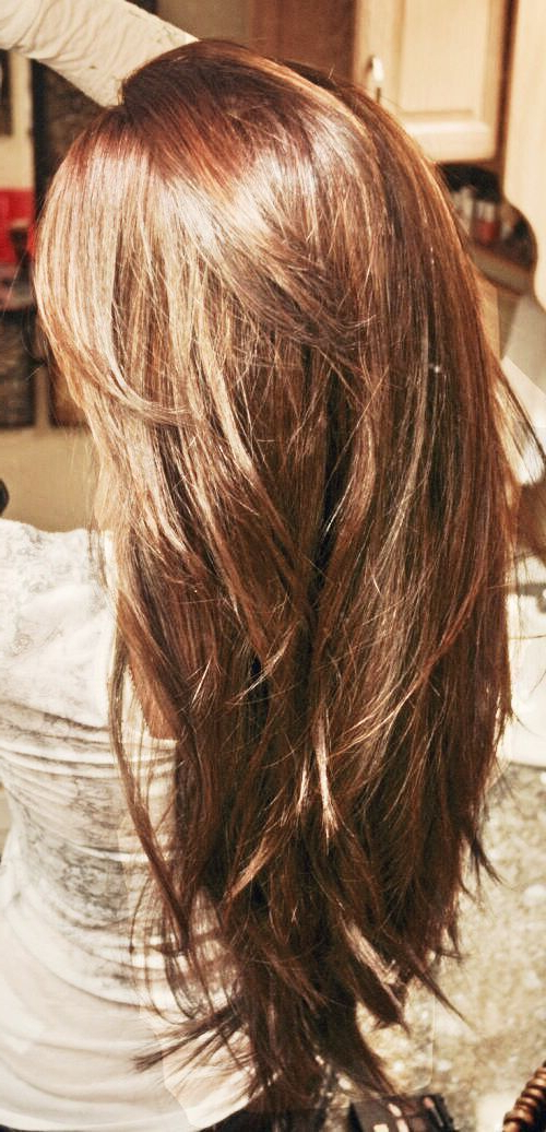 Featured Photo of V Cut Layers Hairstyles For Thick Hair