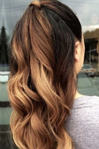 15 Summer Half Up Half Down Ponytail Trends You`ll Love – My Stylish Zoo Intended For Half Up Curly Hairstyles With Highlights (View 18 of 25)