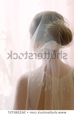 Tender Wedding Stylish Hairstyle Accessories Veil Stock Photo (Edit Within Tender Bridal Hairstyles With A Veil (View 8 of 25)