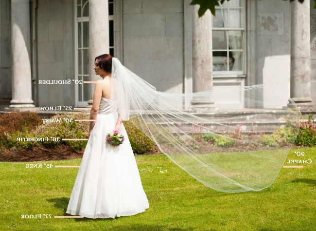 The Complete Guide To Wedding Veil Lengths For Wedding Hairstyles With Extra Long Veil With A Train (View 16 of 25)