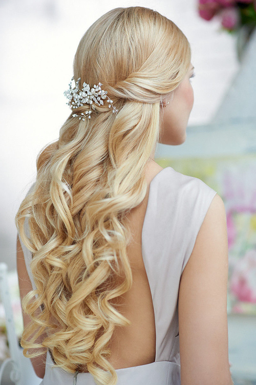 Wedding Hairstyles Curls Down Ideas For Brides | Elstyle With Regard To Tender Bridal Hairstyles With A Veil (View 12 of 25)
