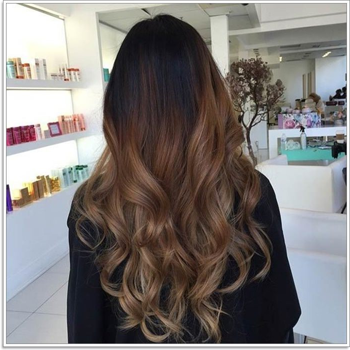108 Caramel Highlights That'll Blow Your Mind [2019] For Long Dark Hairstyles With Blonde Contour Balayage (View 16 of 25)