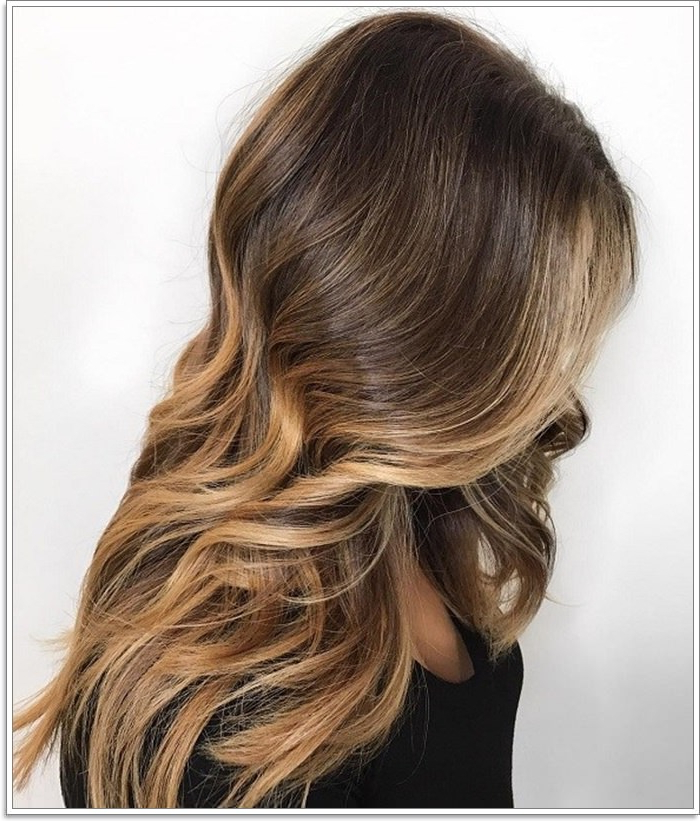 145 Amazing Brown Hair With Blonde Highlights Regarding Long Thick Black Hairstyles With Light Brown Balayage (View 23 of 25)