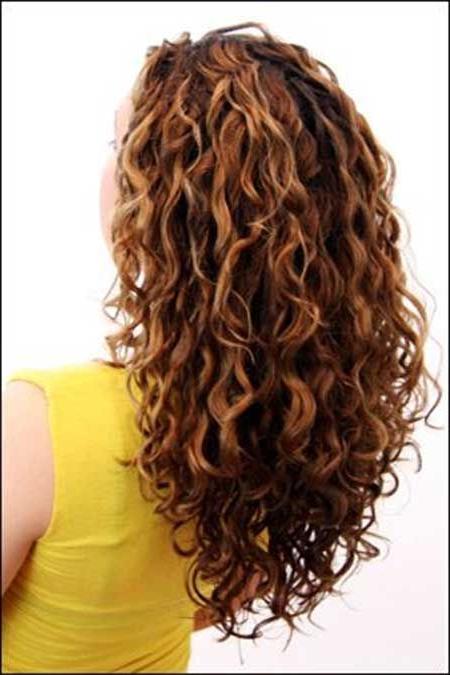 15 Long Curly Hair Cuts | Hair | Curly Hair Styles, Long Curly Inside Long Curly Layers Hairstyles (View 2 of 25)