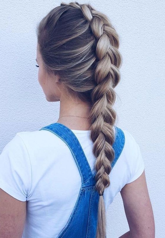 20 Gorgeous Braided Hairstyle Ideas: Chic Braids For Women 2019 Within Long Hairstyles With Braids (View 7 of 25)