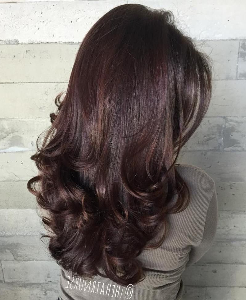Featured Photo of Long Layered Brunette Hairstyles With Curled Ends
