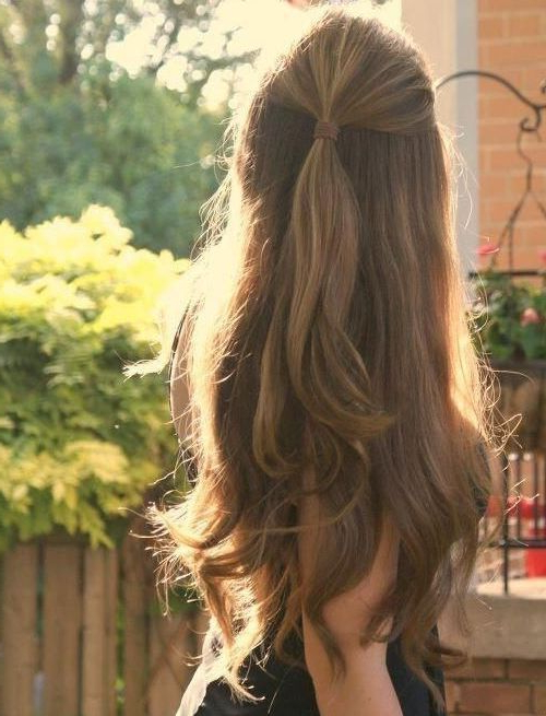 20 Long Hairstyles You Will Want To Rock Immediately! | ???? | Hair In Long Hairstyles Half Pulled Back (View 9 of 25)