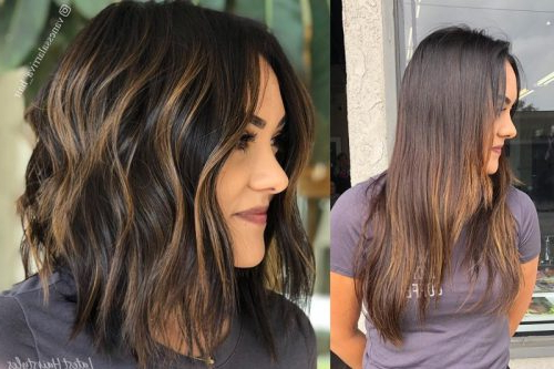 2019's Best Hair Color Ideas Are Right Here Throughout Long Hair Colors And Cuts (View 24 of 25)