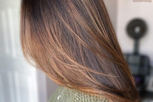 2019's Best Hair Color Ideas Are Right Here With Regard To Long Hairstyles And Colours (View 7 of 25)