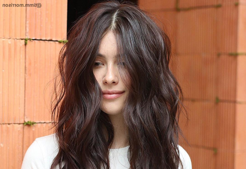 26 Modern Shag Haircuts To Try In 2019 Inside Long Layered Shaggy Hairstyles (View 22 of 25)