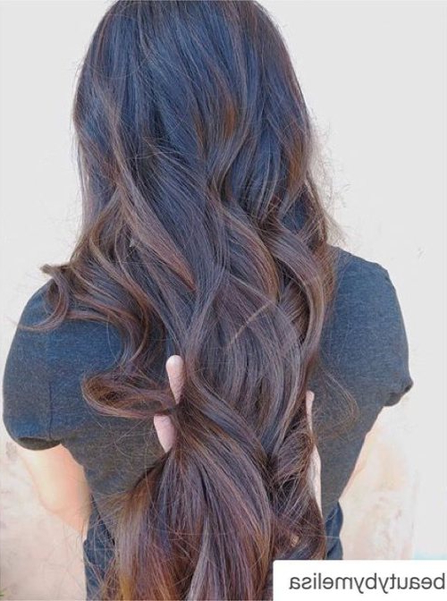 30 Best Balayage Hairstyles 2019 – Balayage Hair Color Ideas: Blonde Within Long Thick Black Hairstyles With Light Brown Balayage (View 17 of 25)
