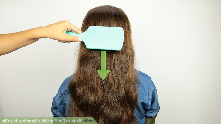 4 Ways To Put Your Hair Up With A Jaw Clip – Wikihow With Hair Clips For Thick Long Hairstyles (View 6 of 25)