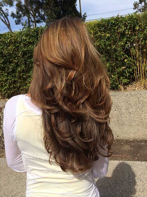 50 Best Hairstyles For Women Back View Of Long Layered Hairstyles Regarding Back View Of Long Hairstyles (View 11 of 25)