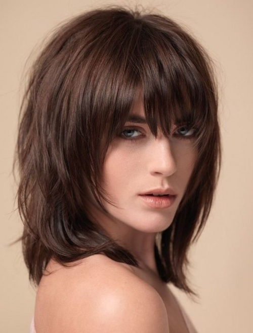 50 Medium Shag Haircuts | Hairstyles Update Intended For Long Brown Shag Hairstyles With Blonde Highlights (View 18 of 25)