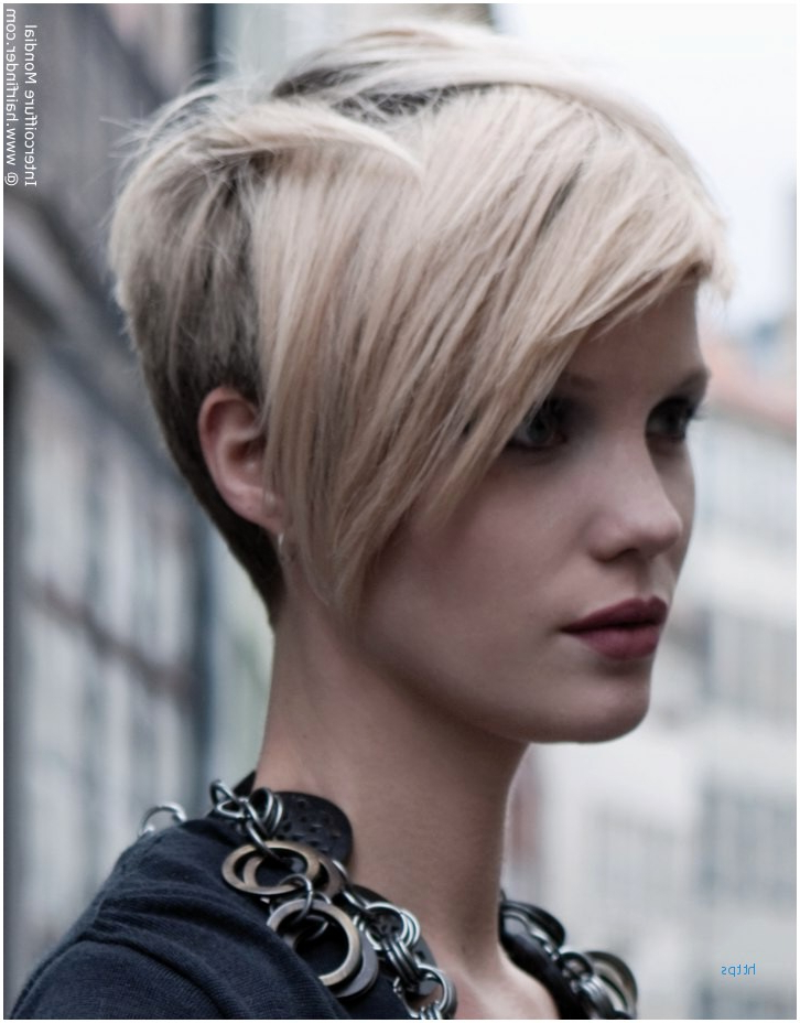 52 Fresh Short In The Front Long In The Back Hairstyles Models Regarding Long Front Short Back Hairstyles (View 13 of 25)