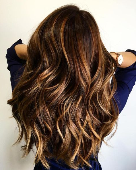 60 Most Beneficial Haircuts For Thick Hair Of Any Length In 2019 Intended For Long Hairstyles Brown With Highlights (View 2 of 25)