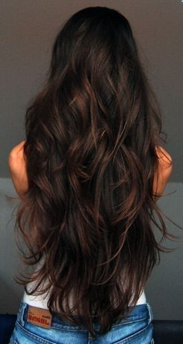 69 Cute Layered Hairstyles And Cuts For Long Hair | Hair | Hair Within Black Long Layered Hairstyles (View 12 of 25)