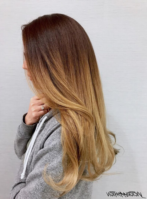 75 Strikingly Beautiful Ombre Hairstyles (With Pictures) in Long Voluminous Ombre Hairstyles With Layers