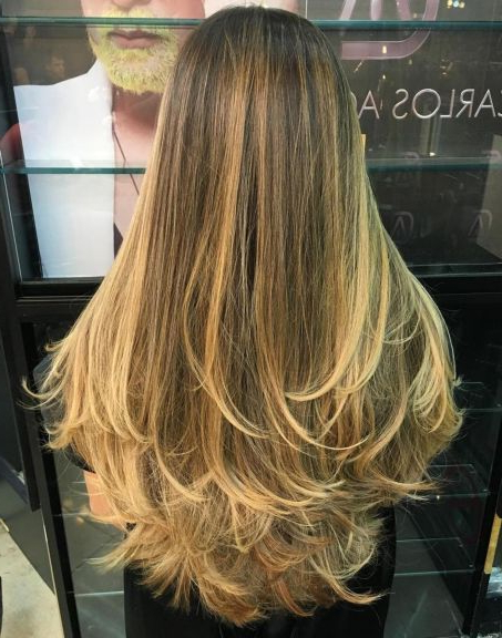 80 Cute Layered Hairstyles And Cuts For Long Hair In 2019 | Hair intended for Soft Feathery Texture Hairstyles For Long Hair