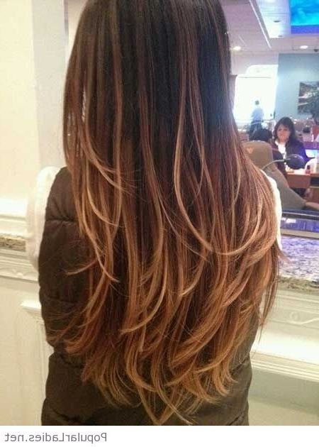 Amazing Long Hairstyles And Haircuts Within Layered Long Hairstyles Back View (View 22 of 25)