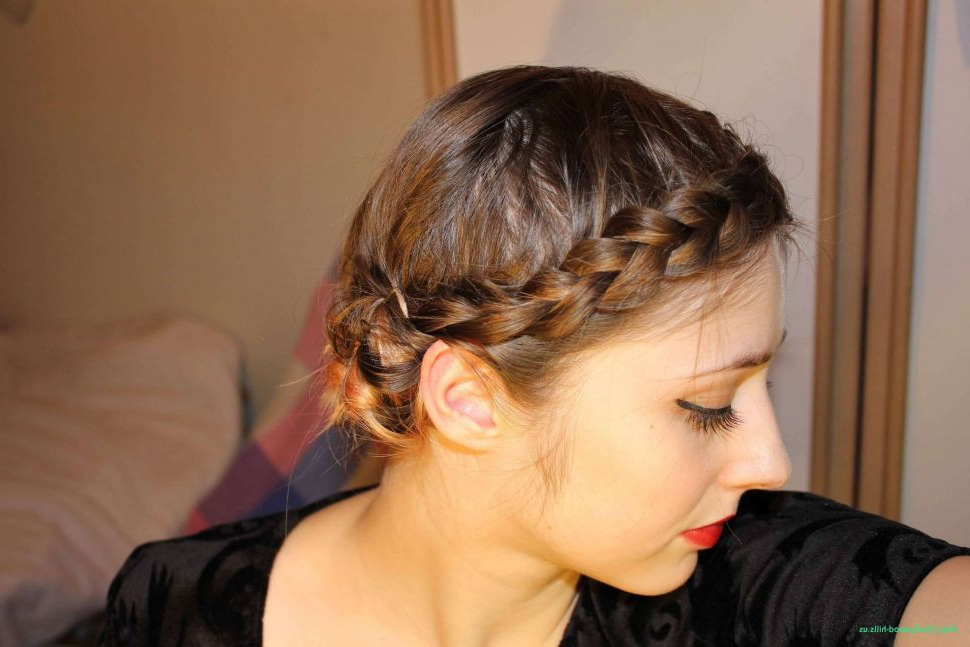 Braid Ideas For Thick Hair – Raso Within Braids Hairstyles For Long Thick Hair (View 7 of 25)