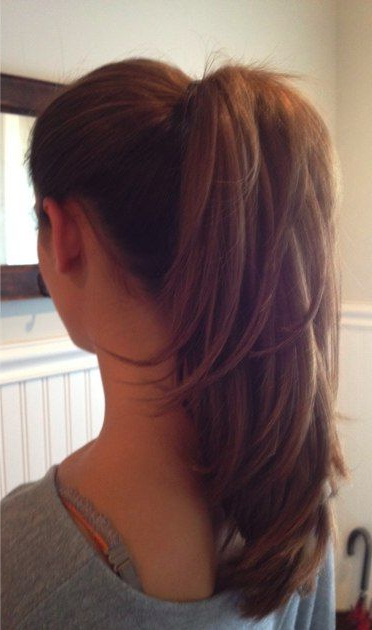 Featured Photo of Ponytail Layered Long Hairstyles
