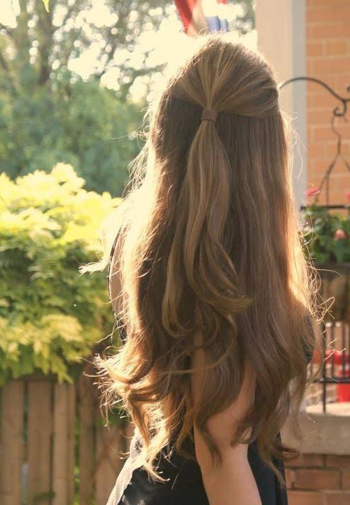 Half Up Half Down Hairstyles For Straight Hair | Hair And Beauty In For Long Hairstyles Half (View 21 of 25)