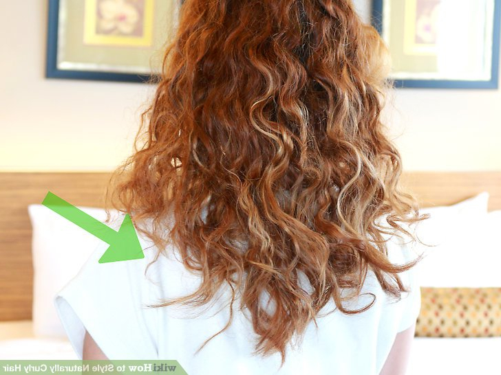 How To Style Naturally Curly Hair (With Pictures) – Wikihow Throughout Everyday Loose Wavy Curls For Long Hairstyles (View 22 of 25)