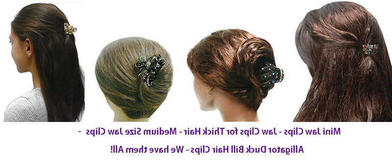 Jeweled Hair Claw Clips regarding Hair Clips For Thick Long Hairstyles