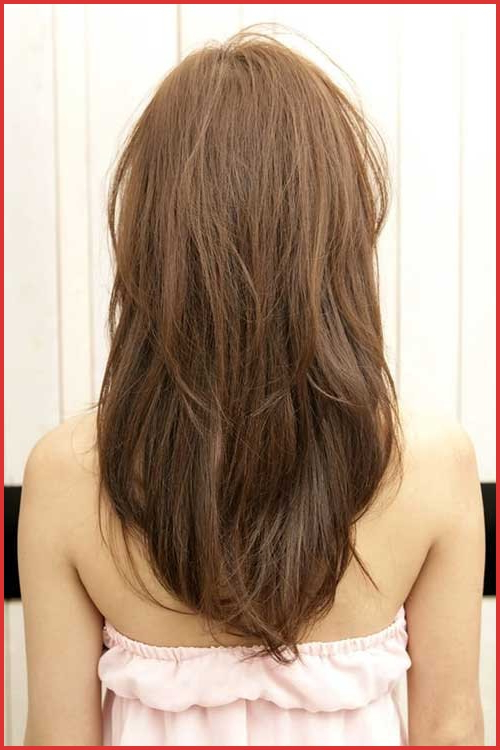 Layered Hair Back View V Shape 59365 15 Seriously Gorgeous With Regard To Long Hairstyles Back View (View 20 of 25)